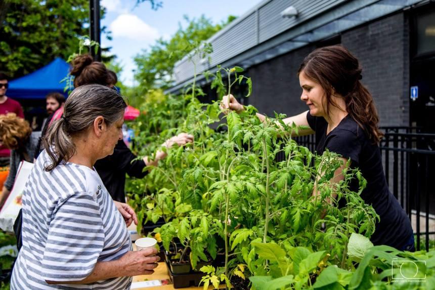 Fêter l'agriculture urbaine