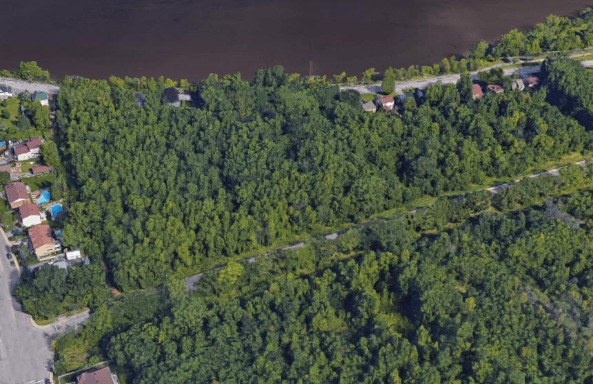 Deux lots boisés sous haute convoitise dans Rivière-des-Prairies
