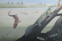 Des fossiles de tétrapodes en Afrique du Sud remettent en cause la théorie des tropiques