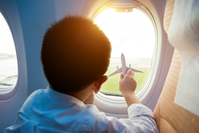 Bientôt des avions sans hublots?
