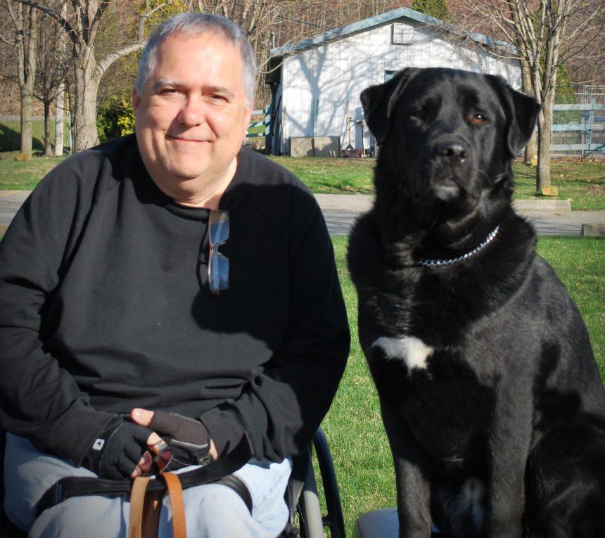 Le RAPLIQ déplore le refus d'un chien Mira dans un hôtel montréalais