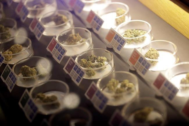Une première boutique de cannabis sur la Plaza St-Hubert