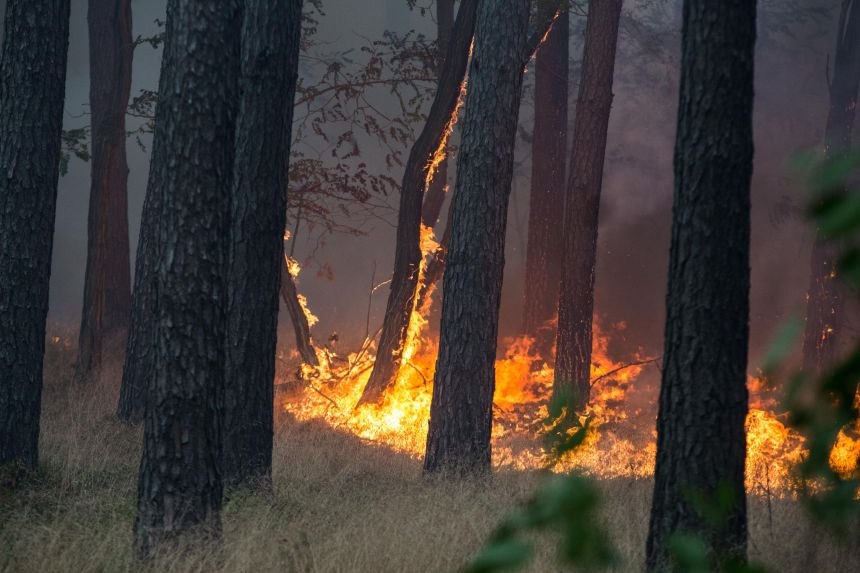 Incendies en Grèce: le gouvernement suspecte «des actes criminels»
