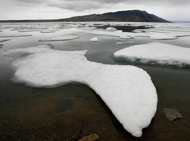 Les glaciers de l'Extrême-Arctique rétrécissent