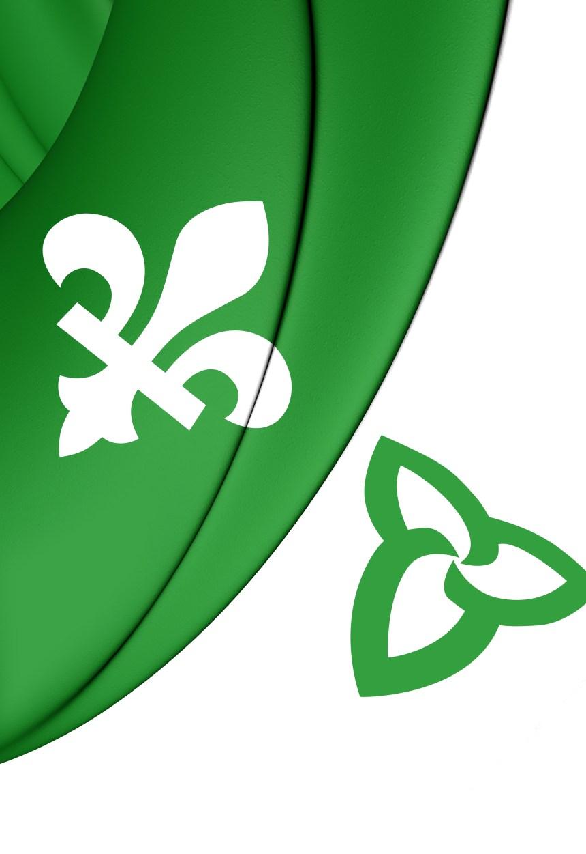 Les francophones en déclin en Ontario