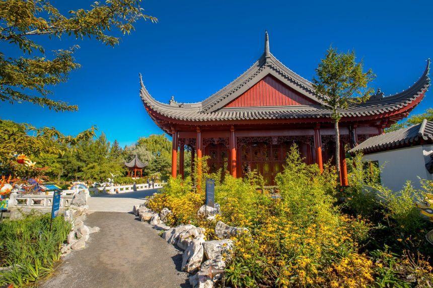 Jardin Botanique: Nouveau chantier au Jardin de Chine