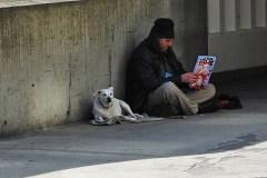 Milton Parc: des citoyens mécontents de la venue d'un centre pour sans-abri
