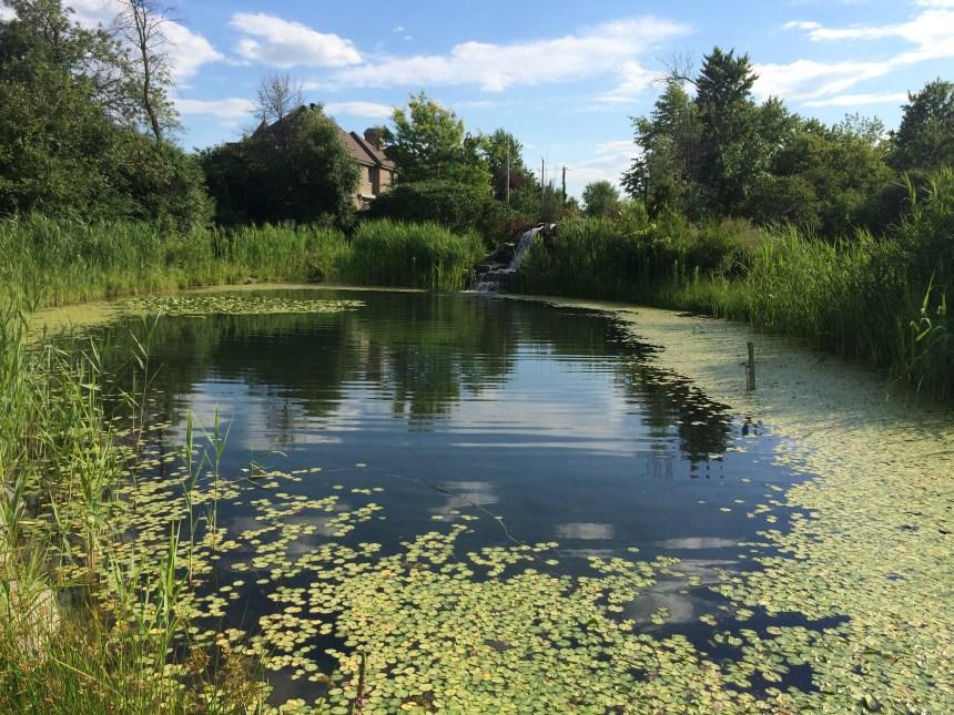 Les rénovations du parc Guillaume-Bruneau reportées