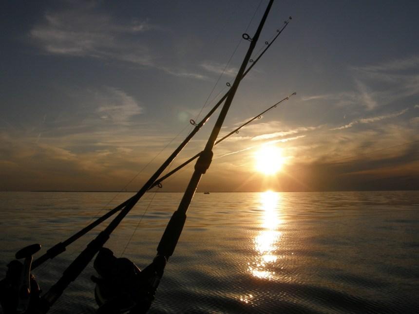 Palourdes: le permis de pêche est annulé