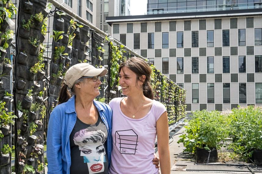 Agriculture urbaine, recherche et réinsertion sociale sur le toit du Palais des congrès