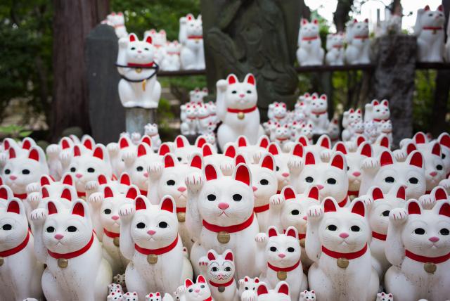 À Tokyo, un temple des chats porte-bonheur attire les instagrammeurs
