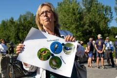 Le fédéral appelé à sauver une espèce de héron menacée à Montréal