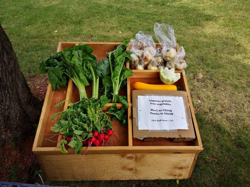 Fruits et légumes gratuits au COVIQ