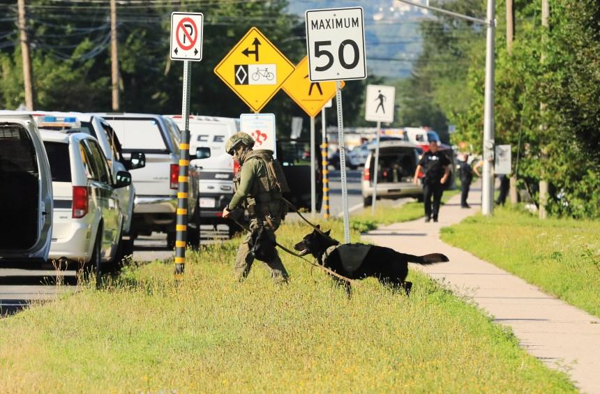 Fusillade à Fredericton: Goodale se veut rassurant