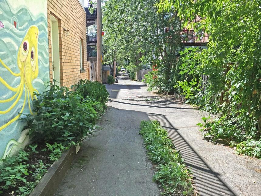 Trois nouvelles ruelles vertes dans Hochelaga-Maisonneuve