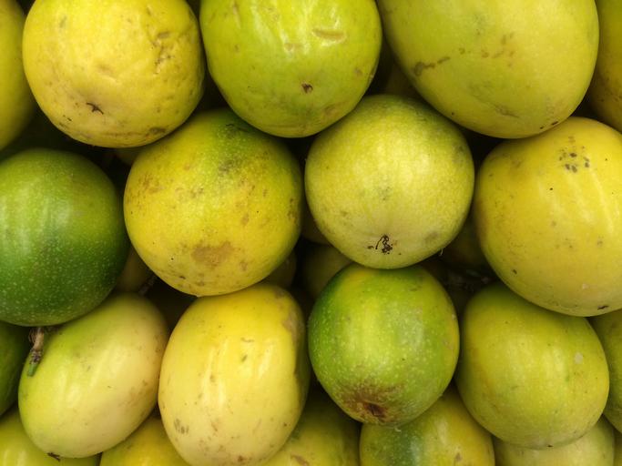 Un fruit amazonien prévient l'obésité chez des souris suralimentées