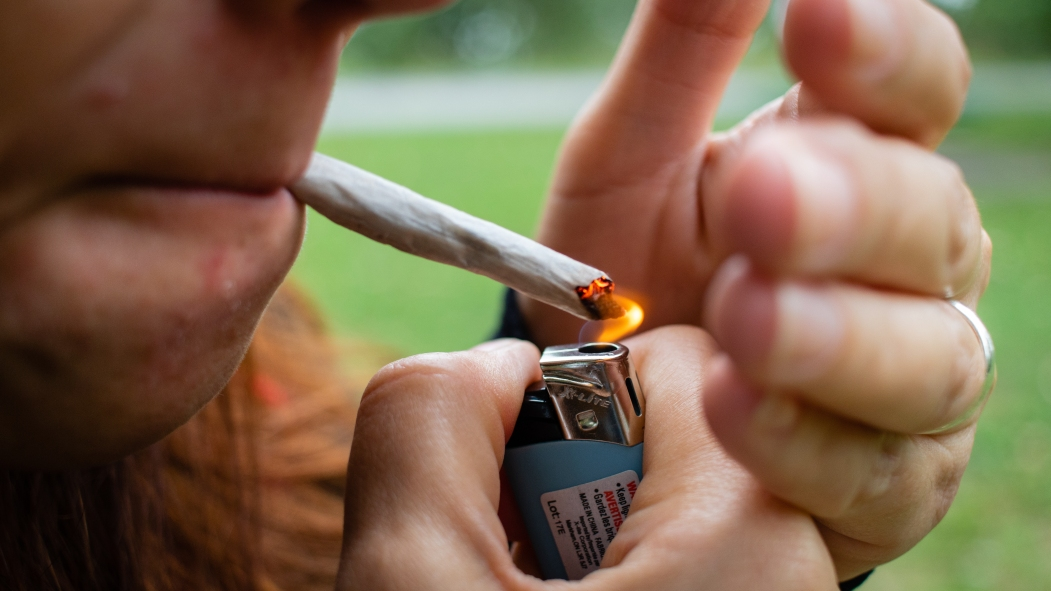 constats cannabis