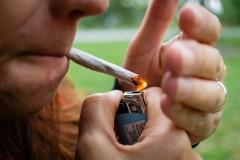 Cannabis: Pas de règlement avant la loi provinciale pour Montréal-Nord