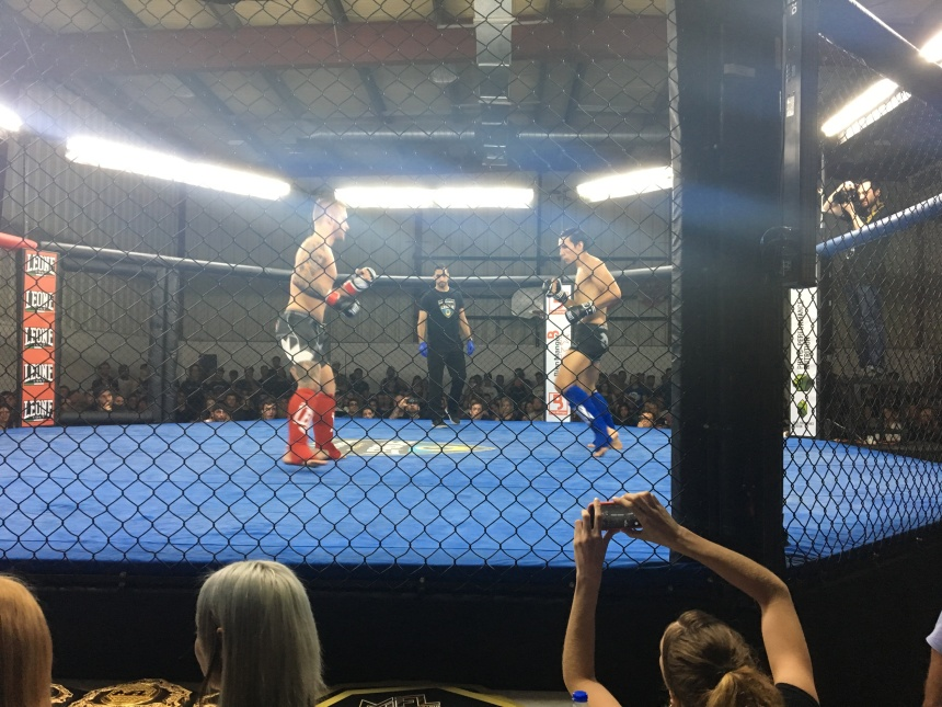 Du sambo au MMA