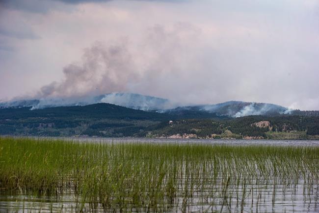 Un été marqué par de nombreux incendies de forêt