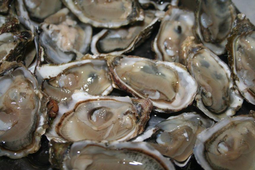 Un rappel d'huîtres vendues au Québec est en vigueur