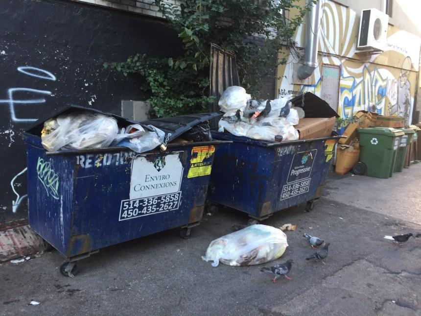 Des résidants en ont assez des déchets de la Plaza St-Hubert