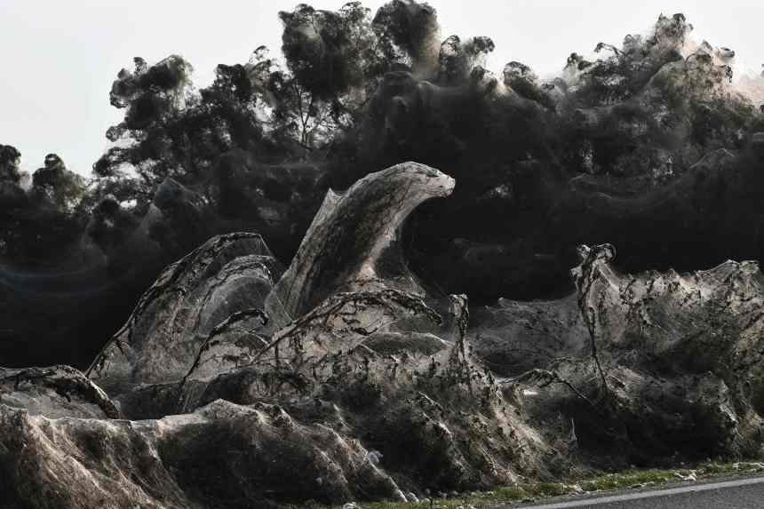 Un lac pris dans une toile d'araignée géante en Grèce
