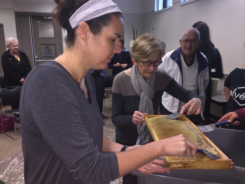 Honey-Making Workshop at Dorval Library