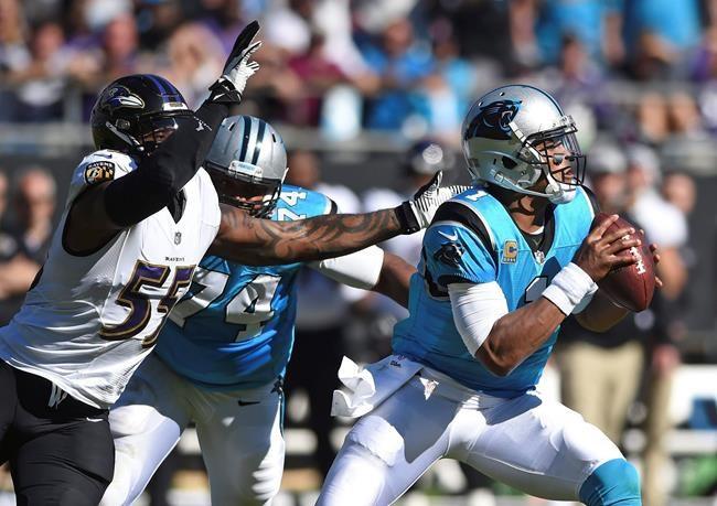 Panthers: de la stabilité avec Newton