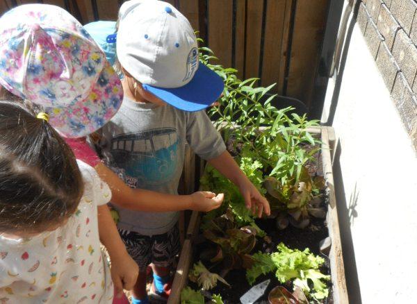 Les enfants du CPE prennent part à des ateliers de jardinage.