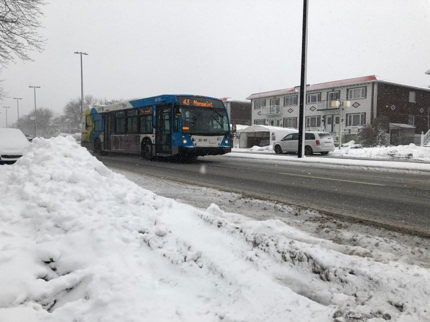 Une voie réservée pour bus au cœur d'une querelle politique