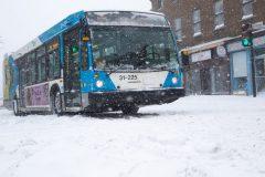 STM: la situation des bus s'améliore, mais demeure sous les attentes