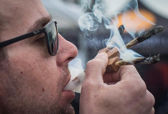 Le prix du cannabis au Canada en hausse de 17% après la légalisation