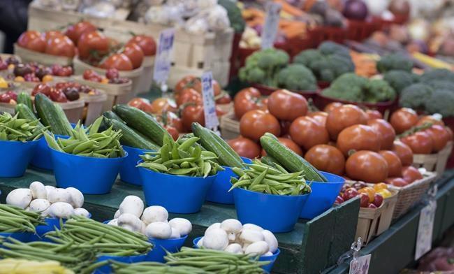 Moins de lait, plus de fruits et légumes dans le nouveau Guide alimentaire canadien