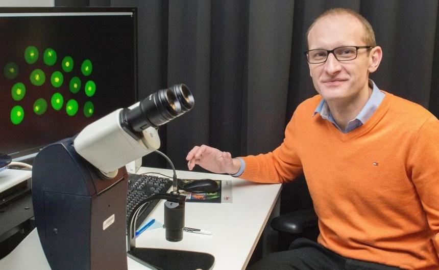 Fécondation in vitro: une nouvelle découverte pour réduire les défauts d'embryons