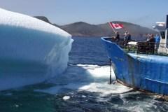 Une distillerie de Terre-Neuve se fait voler de l'eau d'iceberg