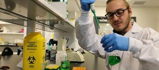 Formation: des biochimistes spécialistes du cannabis