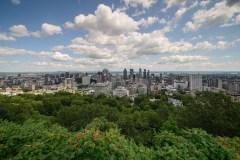 Nos forêts urbaines sont-elles en bonne santé?