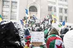 Manifestation à Montréal contre le 5e mandat de Bouteflika