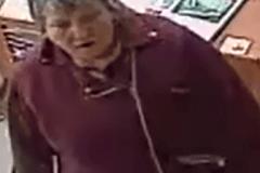 La police de Sherbrooke cherche deux présumés voleurs de lézard