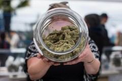 Le nombre d'enfants intoxiqués au cannabis a bondi depuis la légalisation
