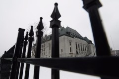 La Cour suprême n'entendra pas l'appel sur l'euthanasie d'un ourson