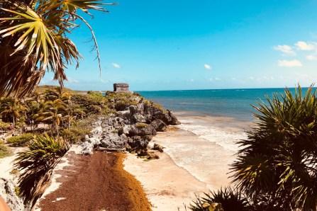 Guide de survie de la Riviera Maya