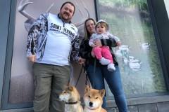 Une famille de Laval retrouve son chien à Rivière-des-Prairies