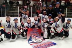 Pointe-aux-Trembles, pépinière de champions hockeyeurs