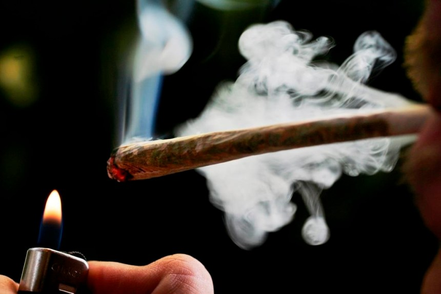 Des spécialistes se penchent sur le cannabis pour traiter la sclérose en plaques