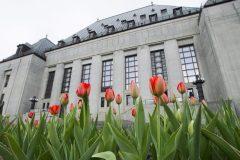 Le processus de sélection du prochain juge à la Cour suprême est enclenché
