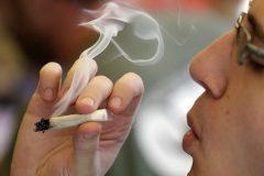 Les consommateurs de cannabis auraient besoin de deux fois plus de sédation