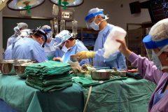 Les réunions de famille sont un bon moment pour parler des dons d'organes