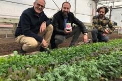 Préserver la biodiversité agricole en ville